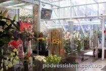 Безрамное остекление магазин цветов